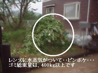 f0031037_1810712.jpg