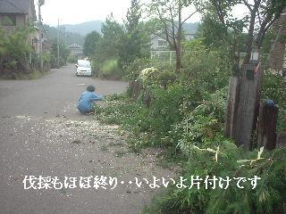 f0031037_1893360.jpg