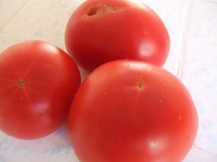 スローなトマトにしてくれ。_b0069365_14315222.jpg