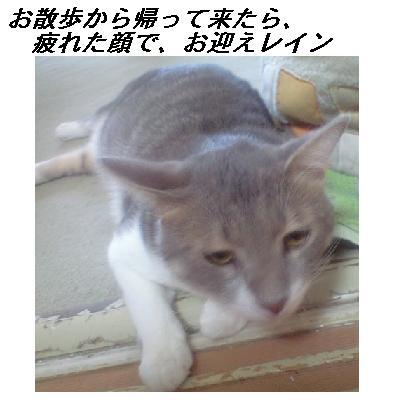 b0112380_19395689.jpg