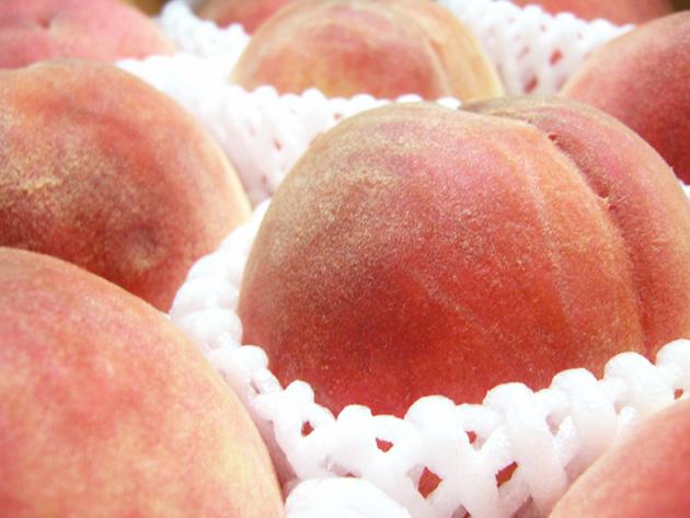 Peach☆☆☆_b0097224_012347.jpg