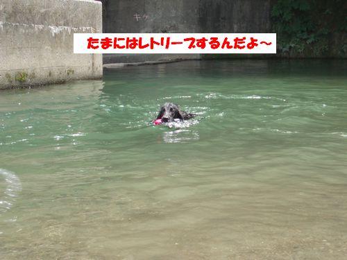 道志川で_b0148945_19565910.jpg