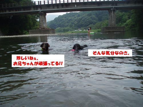 道志川で_b0148945_1957481.jpg