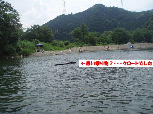道志川で_b0148945_20122090.jpg