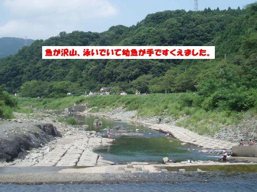道志川で_b0148945_206496.jpg