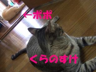 b0118850_20283186.jpg