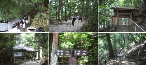 京都 vol.4  <鞍馬から貴船へ山越え>_c0118352_8464045.jpg