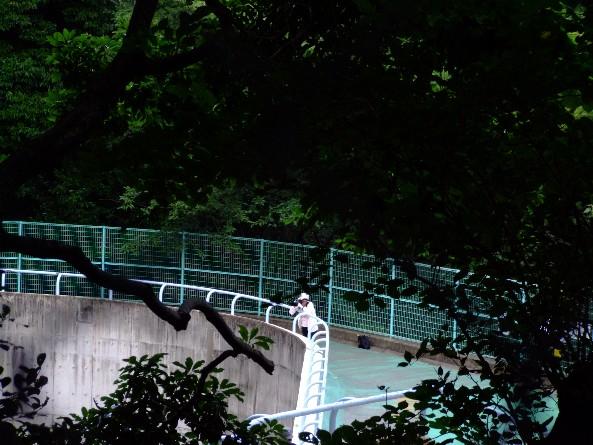 南公園_e0003966_12263982.jpg