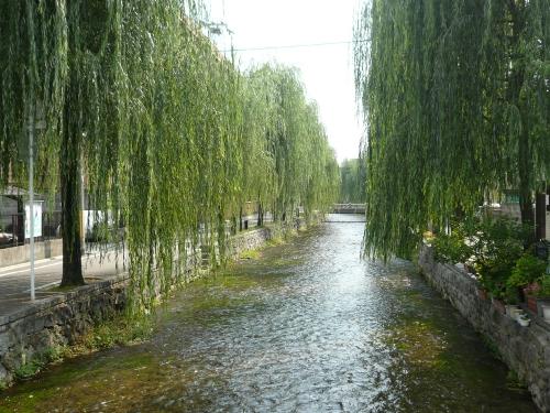京都散策 Part3_f0097683_1902215.jpg