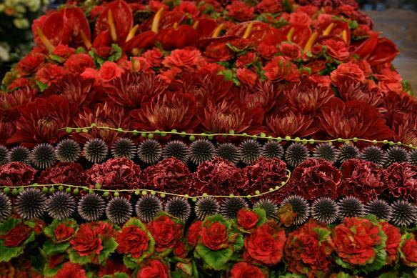 紅い花。_c0069389_17273571.jpg