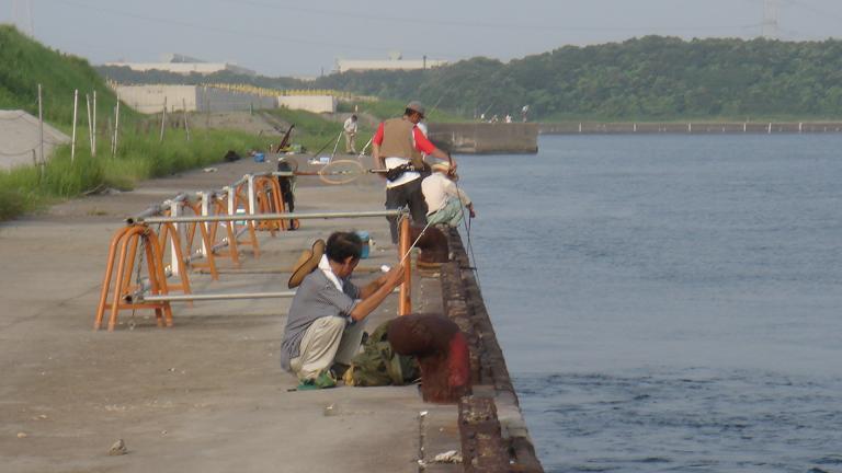 君津市某堤防_e0147297_23403658.jpg