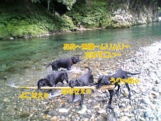 f0148927_1112734.jpg