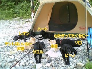 f0148927_15363289.jpg