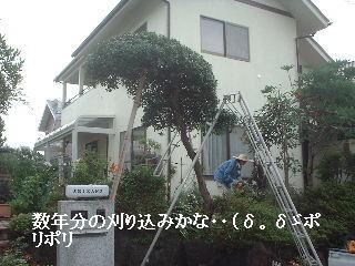 f0031037_18143876.jpg