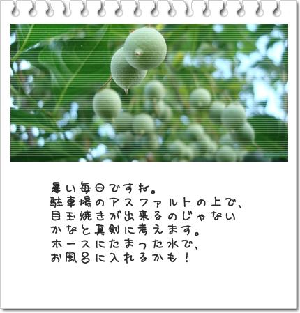 b0066947_20273698.jpg