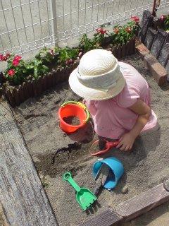 お砂場完成♪・・・水菜のわさび漬け_f0177295_1442987.jpg