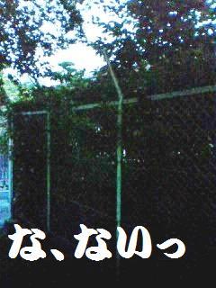 d0137326_0281112.jpg