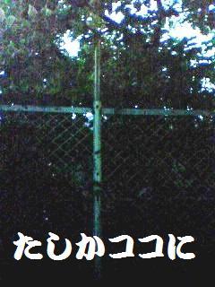 d0137326_029253.jpg