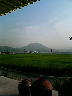 韓国_a0103940_1151317.jpg