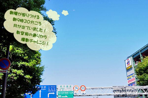 アレなんだ? 真っ青な夏空に白く浮かび上がるものは ~★_b0045453_2049364.jpg