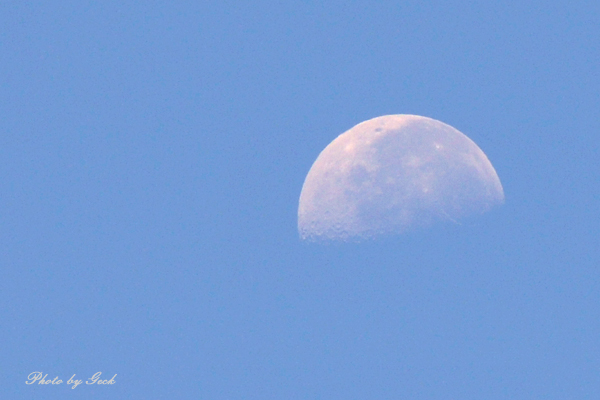 アレなんだ? 真っ青な夏空に白く浮かび上がるものは ~★_b0045453_2050894.jpg