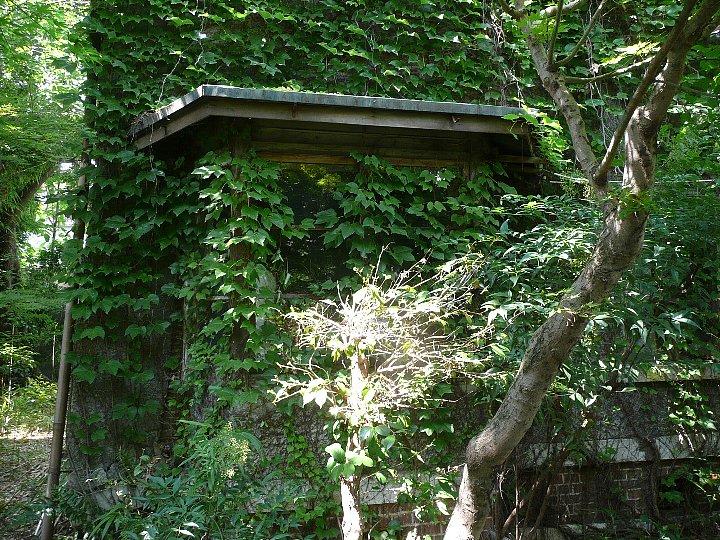 京都の旧岡村宇太郎邸_c0112559_10492837.jpg