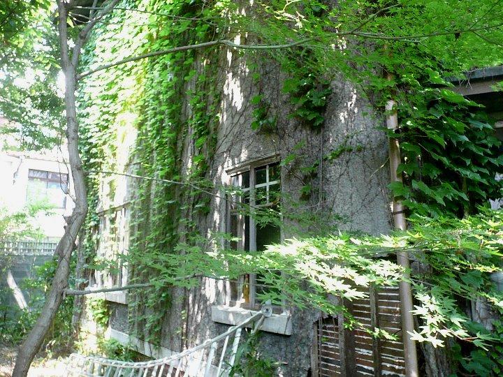 京都の旧岡村宇太郎邸_c0112559_10501263.jpg