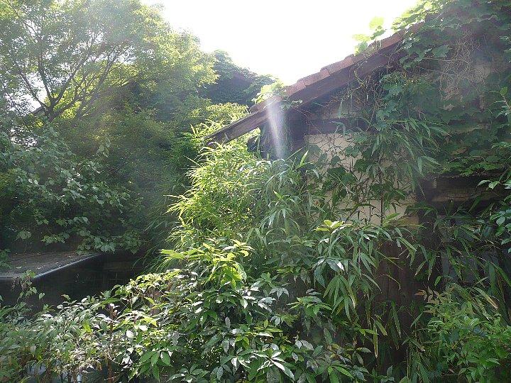 京都の旧岡村宇太郎邸_c0112559_10542651.jpg