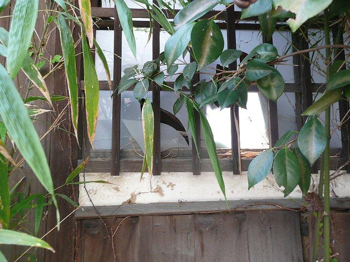 京都の旧岡村宇太郎邸_c0112559_10544929.jpg