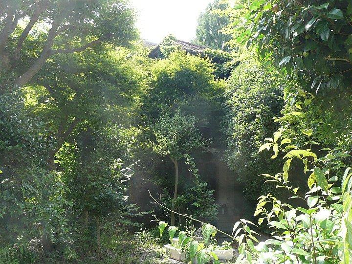京都の旧岡村宇太郎邸_c0112559_1054811.jpg