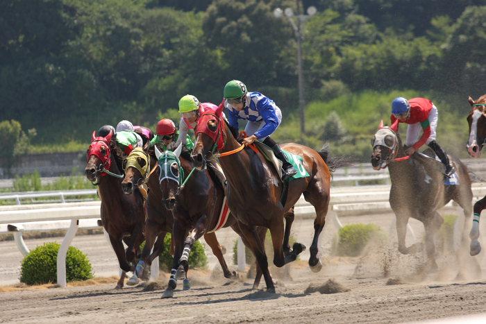 濱田達也騎手、3勝目~_a0077663_1917077.jpg