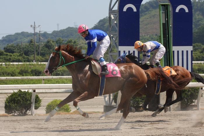濱田達也騎手、3勝目~_a0077663_1917431.jpg