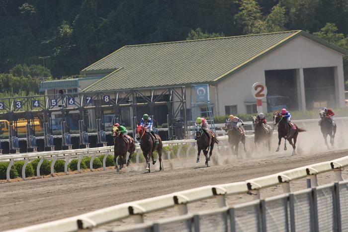 濱田達也騎手、3勝目~_a0077663_1917816.jpg