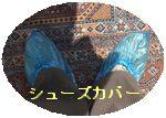 a0052666_0264252.jpg