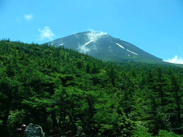 7月25日 富士5合目お中道の花と風景_e0145782_2093979.jpg