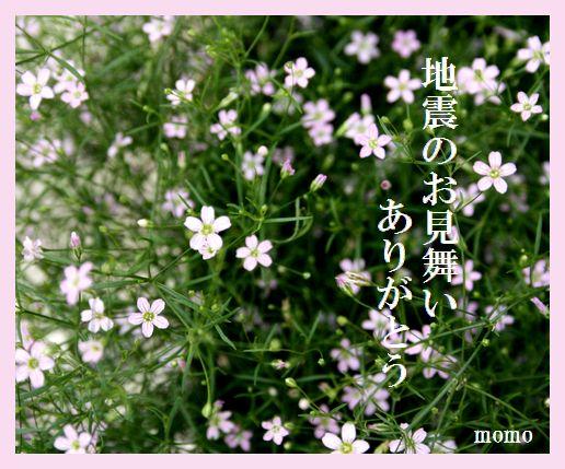 f0088197_0284882.jpg
