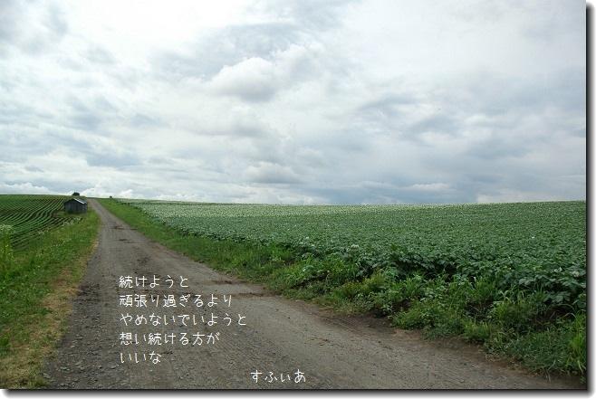 b0152416_0103526.jpg