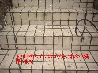 f0031037_19223580.jpg