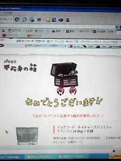 b0032368_1745248.jpg