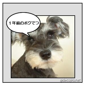 d0079701_1645571.jpg