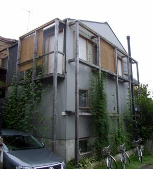 緑のカーテン三年目_b0038919_9455422.jpg