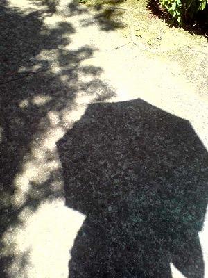 日傘くるくる_d0123425_15524991.jpg