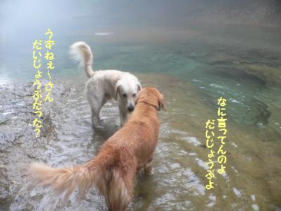f0118135_1555988.jpg