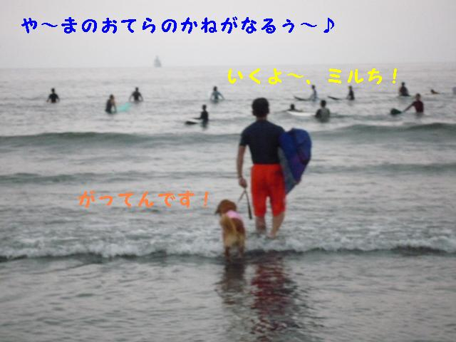 c0159512_14481314.jpg