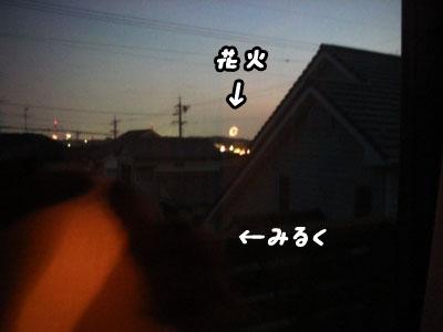 f0129214_10492478.jpg