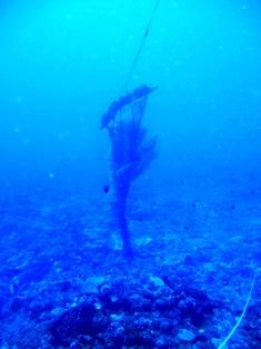 海底に沈んだ伝説の島、シピンに潜った!_a0043520_3592745.jpg