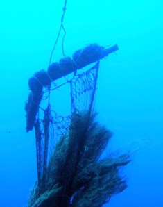 海底に沈んだ伝説の島、シピンに潜った!_a0043520_421989.jpg
