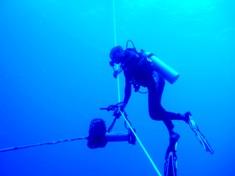 海底に沈んだ伝説の島、シピンに潜った!_a0043520_45961.jpg