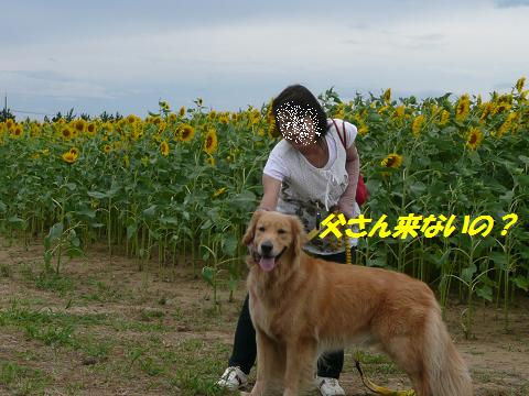 f0114128_16301981.jpg