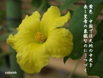 f0161931_2363161.jpg